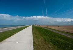 Oostvaardersdijk (maxed35) Tags: lelystad almere oostvaardersdijk