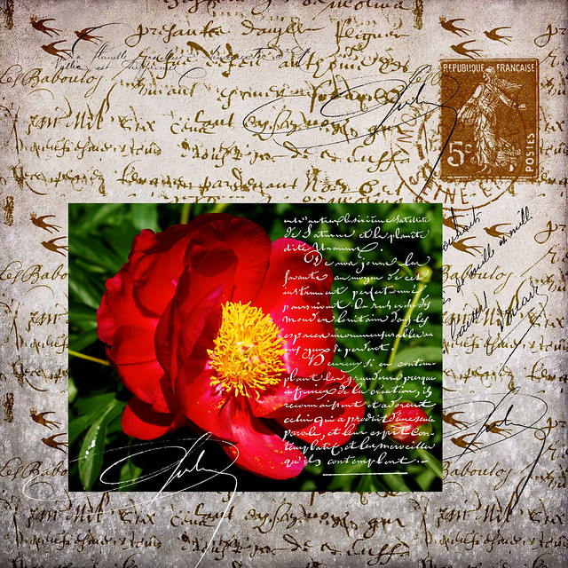 Red Flower Letter using Leslie Nicole French Kiss textures and french brushes