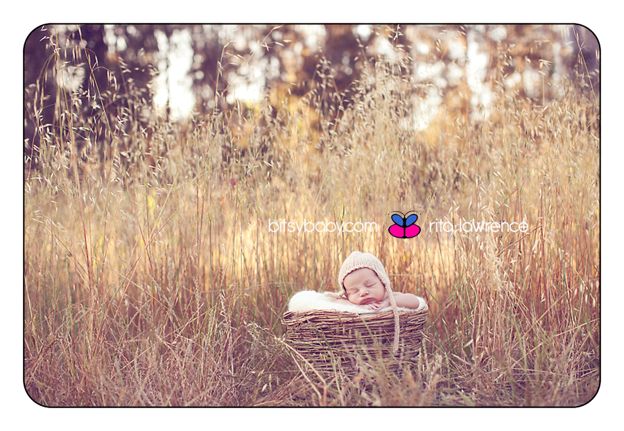 Texas baby photography