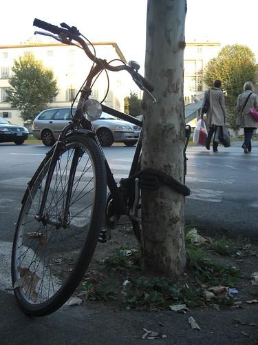 bici 022