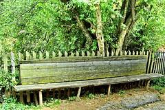 Everything`s green (Emilofero) Tags: tree green nature leaves bench europe bulgaria balkans palisade picketfence paling stockade rodopi mywinners