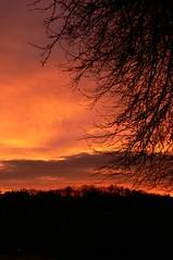 Hilltop Sunset I