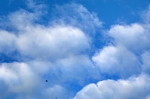 Algodones en el cielo ALR_0055b