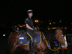 key west mounted police (eywmm0) Tags: park friends west beautiful lines keys high fishing key tour florida good mcgee sunsets flamingos adventure everglades travis times rollers polar flush tight woohoo busted dip hurricanes trespassing superstars florabama comeasyouare hialeah sergeastorms kwfla