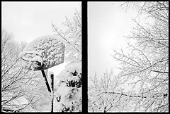 Lexington, Mass., January 2008 (robert schneider (rolopix)) Tags: trees winter blackandwhite bw snow cold film ice monochrome 35mm ma diptych fuji lexington massachusetts pair newengland goaway fujifilm 100 halfframe mass basketballhoop olympuspen sidebyside phooey acros toomuch bostonist oodles ee2 massachusettslife january2008 bostonburbs