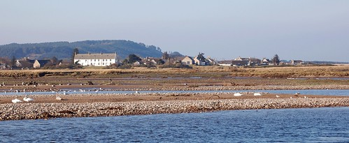 kingston from spey-bay