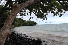 IMG_0846 (Psalm 19:1 Photography) Tags: hawaii oahu diamond head polynesian cultural center waikiki haleiwa laie waimea valley falls