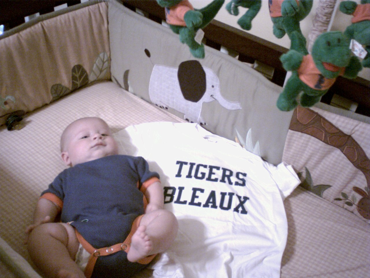 "Ryland and ""Tigers Bleaux"" T-shirt"