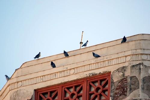 6 Noviembre, visita de los Reyes a Melilla 125