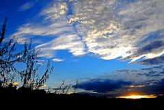 Creekside sundown (wizards.stone) Tags: autumn nikon colorado d200 breathtaking nikonstunninggallery wowiekazowie