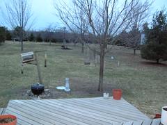 again backyard but with deck (thegirl0nthemoon) Tags: backyard deck earlyspring birdfeeders