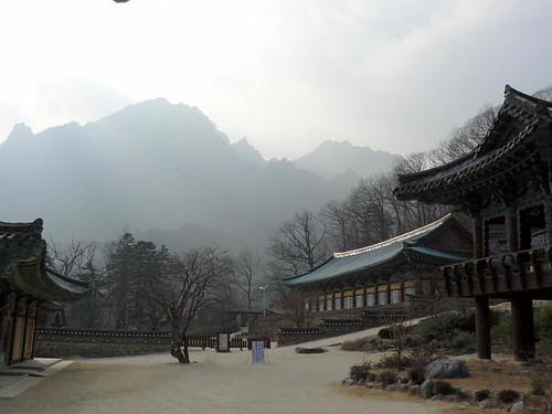 Korea (475)