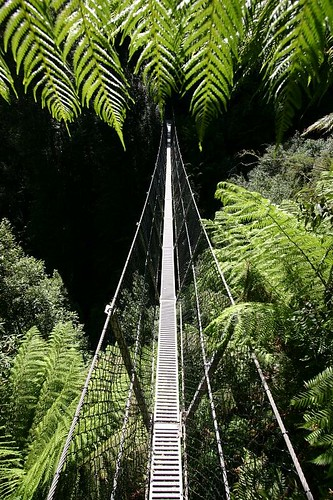 Suspension Brigde at the Montezuma Falls...