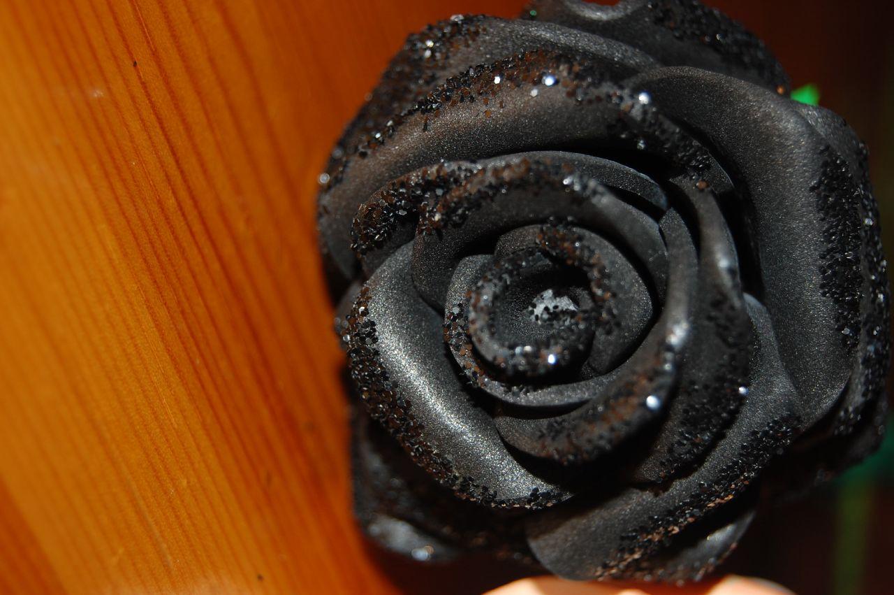 Otras Rosas