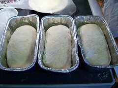 dough_ready for 2nd rise