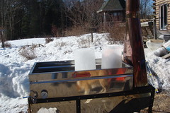 Ready to boil (frozen) sap
