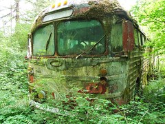 Bus to Madigan (R--) Tags: bus abandoned oregon decay mossy generalmotors madigan columbiacounty