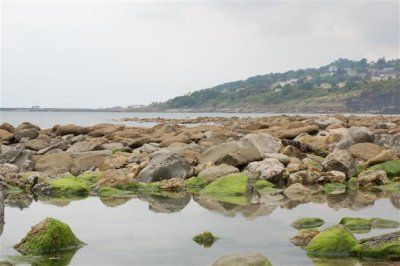 Charmouth Bay (small)