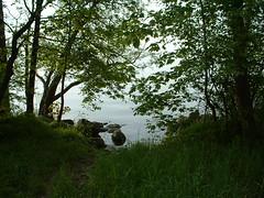 may30_lakeedge