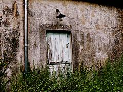 423 (Nebojsa Mladjenovic) Tags: door light house mist france nature digital outdoors lumix spring things panasonic maison bourgogne priroda morvan fz50 prolece kuca svetlost platinumphoto mladjenovic