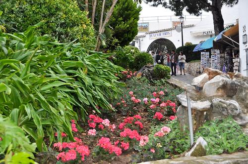 Flores junto a la Plaza de toros
