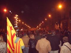 Manifestació 1-D