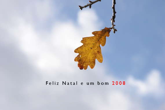 ff_natal07_w