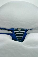 alfa snomeo (kevinparis) Tags: blue snow alfaromeo