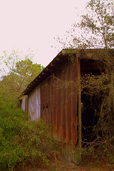 Storage House (MonP) Tags: camping exploring orchard rusted shack bradenton dilapidated lakemanatee