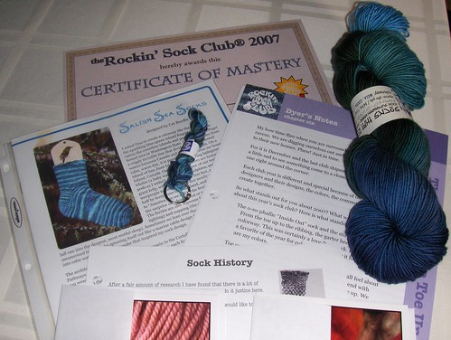 Blue Moon Fiber Arts Socks That Rock Mediumweight - Bella Coola / Nuxalk