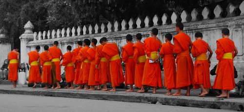 Monks in the morning