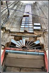 past in present (Justin Gaurav Murgai) Tags: building broken window glass rose architecture contest ruin mansion macau cy tcf challengeyouwinner thechallengefactory