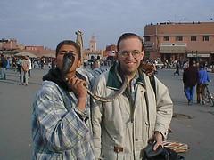 Corbra (Kevin Borland) Tags: africa animal reptile snake morocco marrakech animalia snakecharmer reptilia northernafrica djemaaelfna chordata serpentes vertebrata squamata