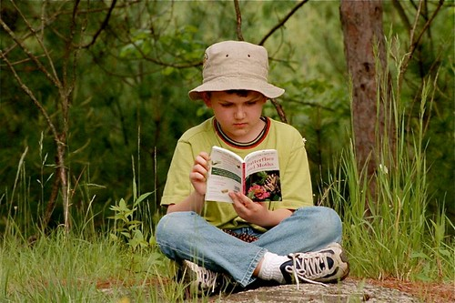 kid in the woods reading nature book on moths and butterflies