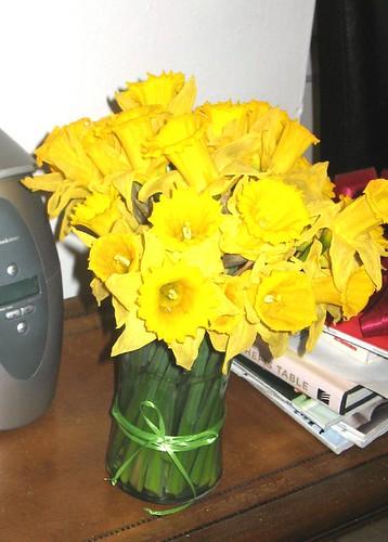 birthday daffodils