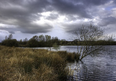 England: Northamptonshire. Cold Beauty (Tim Blessed) Tags: trees winter sky nature water clouds reeds landscapes scenery lakes wetlands ponds rushes avision aplusphoto singlerawtonemapped theperfectphotographer