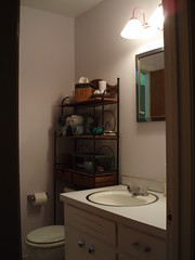 Half Bath Project From Hell - After (2)