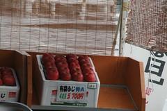 IMG_1011 (shinyai) Tags: japan aomori hirosaki