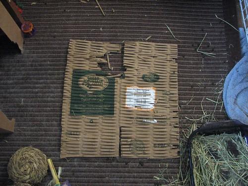 cardboard packing material