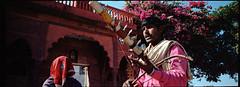 (bradford daly) Tags: india rajasthan spikefiddle agrajaipurroad ravanhatha hotpinkisthenavyblueofindia