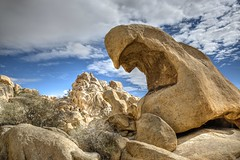 Joshua Tree Rocks -  Day 52 / 365 (Wayne~Chadwick) Tags: