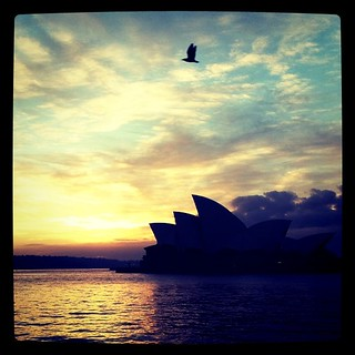 Meeting with the NSW Arts Council, wish me luck. #mostly365 #Sydney #OperaHouse #iphoneography