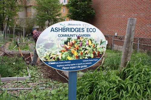 Ashbridges Eco Community Garden
