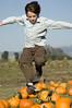 David (cmacphotography) Tags: california portrait david boys pumpkins d2x teens petaluma sonomacounty 2007