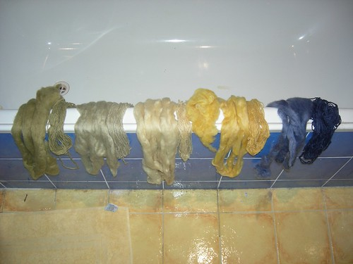 Eucalypt Dyed Fibre (and one not!)