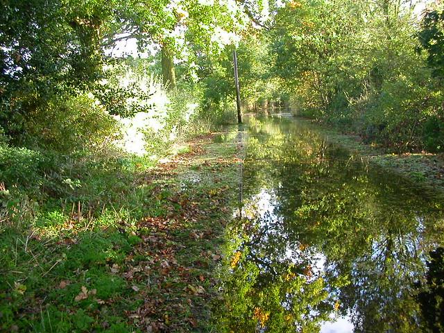 Surlingham floods 2