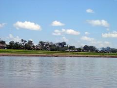 The Ucayali River (Paul Last) Tags: peru amazonbasin amazonjungleexpedition