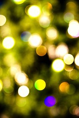 December (kushalruia) Tags: christmas toronto blur tree green colors canon festive lights holidays december graphic bokeh cities places christmastree outoffocus spots oof 10faves impressedbeauty