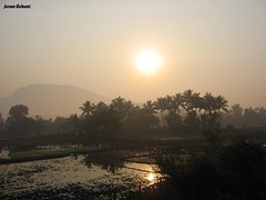 Sunrise - Rural Maharashtra - India (jeevan_balwant) Tags: morning india tree tourism nature rural sunrise landscape photography asia picnic solitude village earlymorning peaceful tranquility calm serenity maharashtra amateur dreamland breathtaking magnificent soothing photogenic canvass naturephotography indianvillage enchanting indiatourism amateurphotographer konkanrailway amateurphotography touristdestinations touristplaces maharashtratourism ruralmaharashtra asiatourism enchantingnature touristdestinationsinindia touristdestinationsinasia