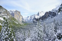 A Beautiful Day in Yosemite.jpg (YOSEMITEDONN) Tags: trees snow yosemite tunnelview